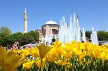 Spring istanbul