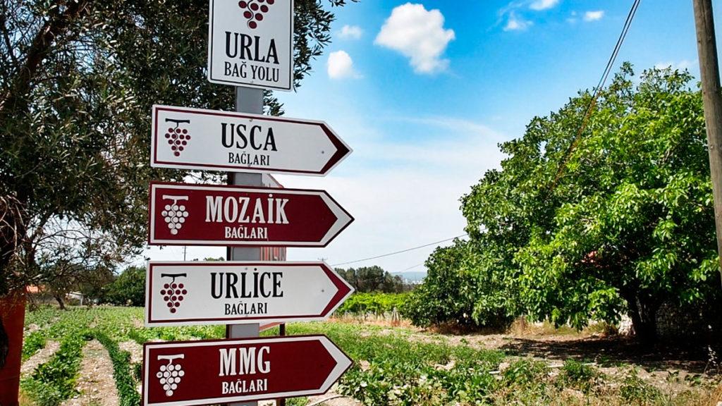 La route des vignobles d'Urla près d'Izmir, Turquie